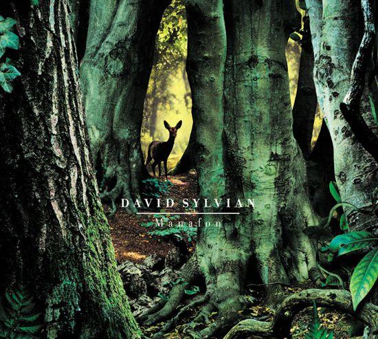 David Sylvian Manafon